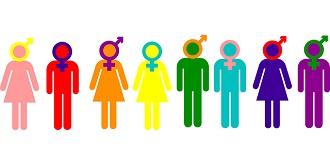 gender 330