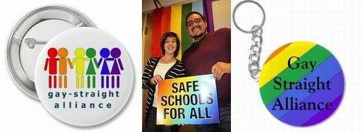 LGBT skupine v ameriškem izobraževalnem sistemu