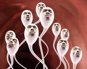 sperma_300