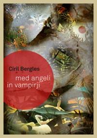 Bergles_200