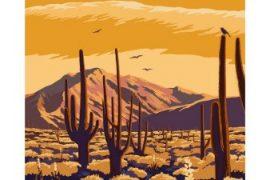 arizona-desert-scene-with-cactus